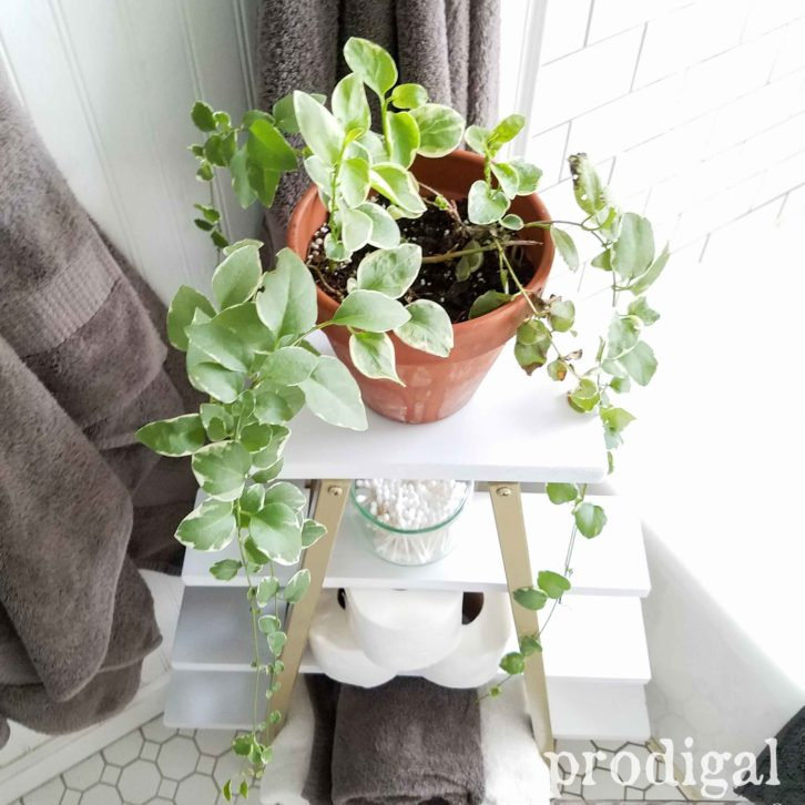 Terra Cotta Plants Stand from Upcycled Bed Rails by Prodigal Pieces | prodigalpieces.com
