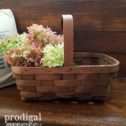Woven Wood Basket for Farmhouse Decor available at Prodigal Pieces | prodigalpieces.com