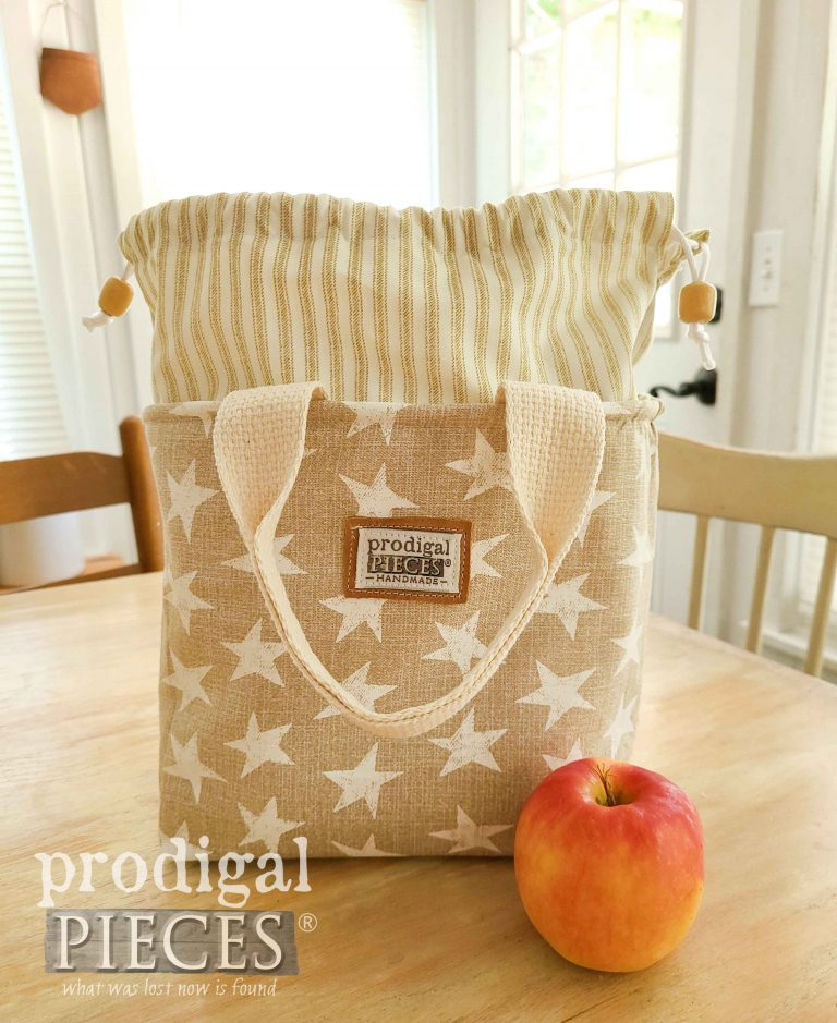 Beige Star with Ticking Stripe Insulated Lunch Bag by Prodigal Pieces | shop.prodigalpieces.com