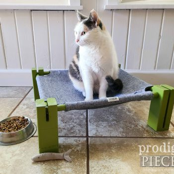 Calico on Cat Cot Hammock or Dog Cot Handmade by Larissa of Prodigal Pieces   available at shop.prodigalpieces.com #prodigalpieces #shopping #handmade #pets #dog #cat